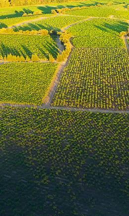 Commercial Drone Financing for Precision Agriculture